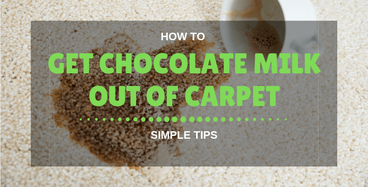 how to get chocolate milk out of carpet